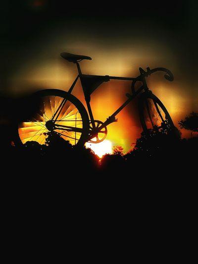 Track Bike Ride