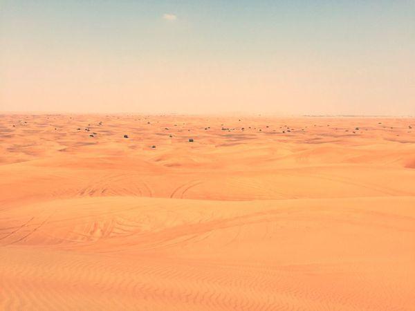 Desert The Desert Trip Morning Stunning View Outdoors