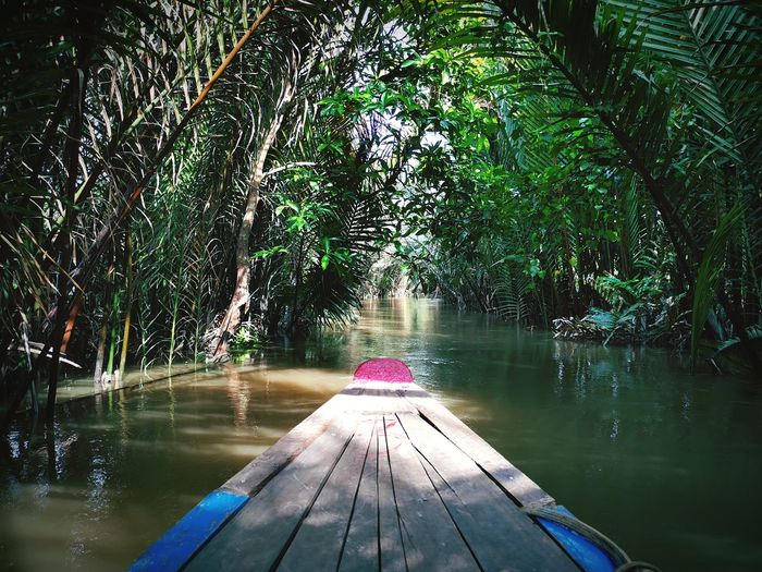 Scenic view from a boat on the mekong delta