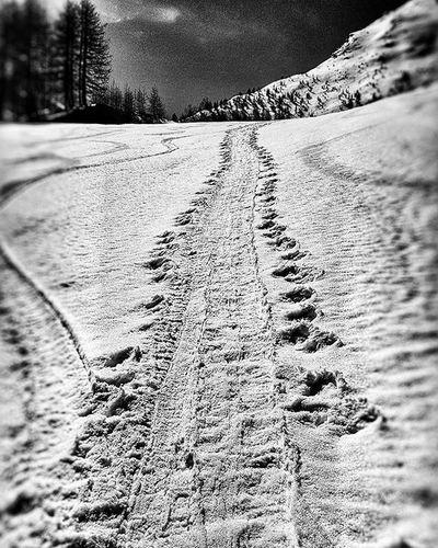 Snowboarding Snowboard Snowboardinglifestyle Snowboardinglife Snow Mountain Mountainlandscape Mountainlifestyle MountainLovers Mountainspirit Country Life Backcountry Backcountrysnowboarding Backcountrylifestyle Freeriding Wildernessculture Earth Splitboarding Splitboard Burton  TheNorthFace G3splitboarding Sparkrandd Blackandwhite Biancoenero bnwlifestylefreedomsestrierealps