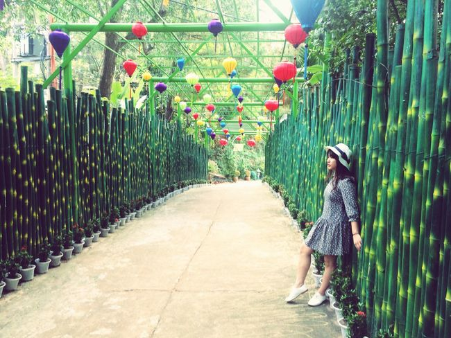 Full Length Plant Casual Clothing Real People One Person Outdoors Nature Day Walking Around Path Pathway Bamboo Lantern Vietnam ASIA Creativity Outdoor Photography Photography Outside Garden Garden Photography Walkway Travel Destinations Travel Travel Photography EyeEmNewHere Long Goodbye The Great Outdoors - 2017 EyeEm Awards