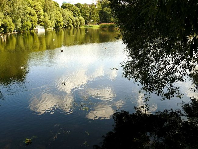 Relaxing Enjoying Life Showcase July Tavrichesky Garden Summer Views Sunny Day 🌞 Sankt-peterburg Russia