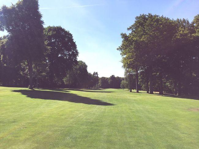 Golf Fairway Longway
