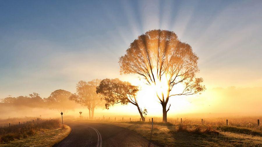 Morning Sunrise Beautiful Weekend