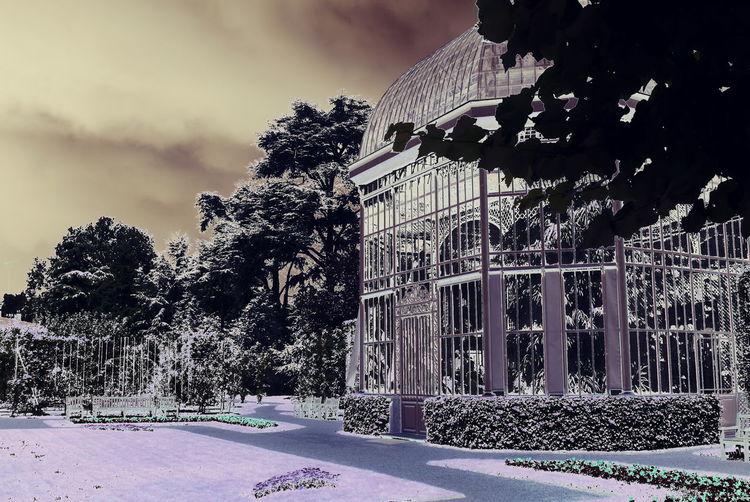 Serres du Jardin Albert KAHN à Boulogne-Billancourt