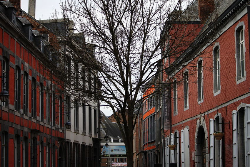 Belgium Namur Architecture Bare Tree Building Exterior Built Structure City Day No People November 2017 Outdoors Residential Building Sky Street Tree Window