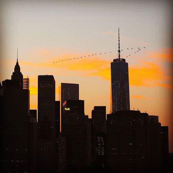 NYC View Libertytower