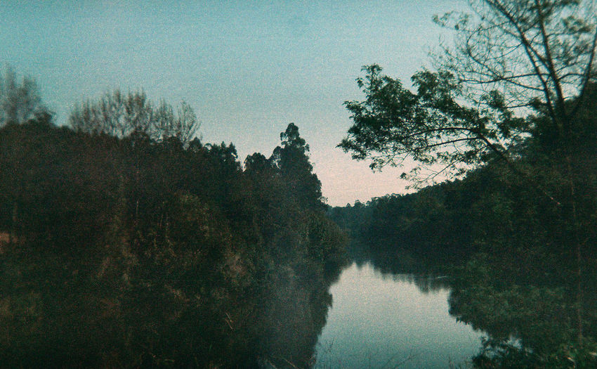 Portugal The Great Outdoors - 2016 EyeEm Awards Vila Do Conde Analogue Photography Nature Tree River