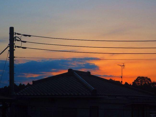 おはようございます。 おはよう Morning Glow Morning Canon S120