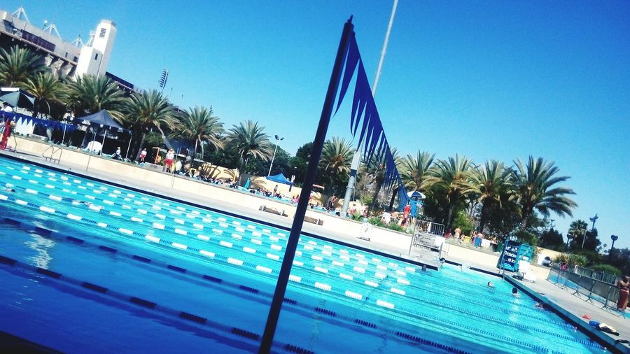 Swimming Pool Lol :) LA84 swimming stadium :)