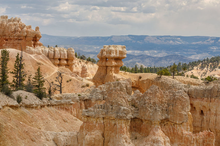 Crimson hoodoos in Bryce Bryce Canyon National Park USA Utah Beauty In Nature Bryce Canyon National Park Cloud - Sky Day Geology Hoodoos Landscape Mountain Nature No People Outdoors Physical Geography Rock - Object Rock Formation Rock Hoodoo Scenics Sculpture Sky Tranquil Scene Tranquility Travel Destinations