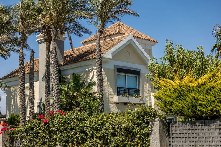 Plant Architecture Built Structure Building Exterior Tree Building Tropical Climate Palm Tree Growth Day Nature House No People Sky Outdoors Window Residential District Green Color Sunlight Low Angle View Almería SPAIN