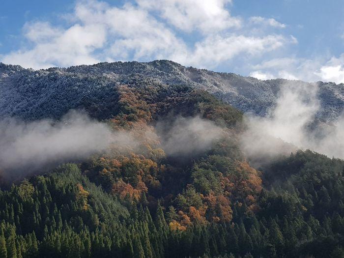 wonders of nature, takayama Japan Takayama EyeEm Selects Cloud - Sky Nature Tree Mountain Sky Outdoors Beauty In Nature first eyeem photo