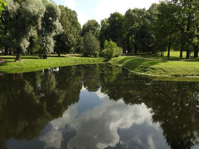 Tavrichesky Garden Sankt-peterburg Mirror Greenyatmosphere Trees Park Summer Days Sunny Day 🌞 Sankt-Petersburg Russia 43 Golden Moments Showcase July