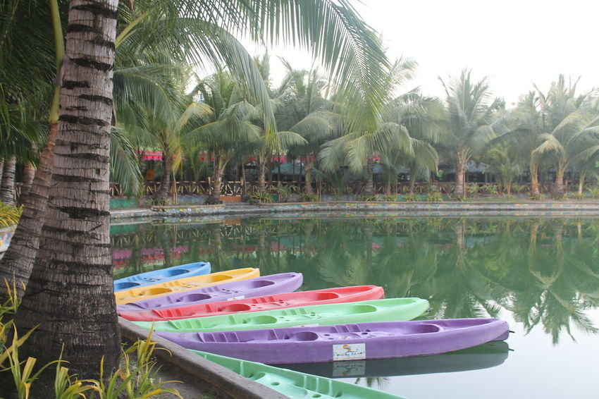 lovely and colorful boats by the lake Beauty In Nature Colorful Boats In The Lake Day Nature Nautical Vessel Palm Tree Reflection Tranquil Scene Tranquility Tree Tropical Climate Water