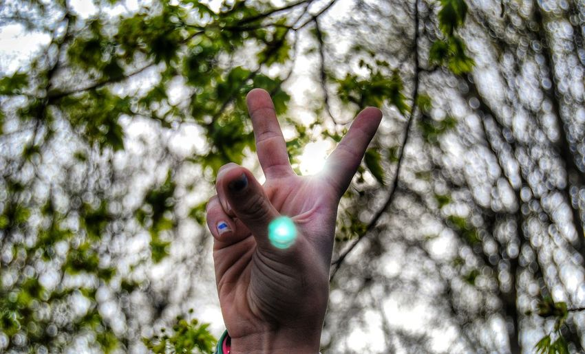 Low Angle View Of Person Showing Peace Sign Against Trees