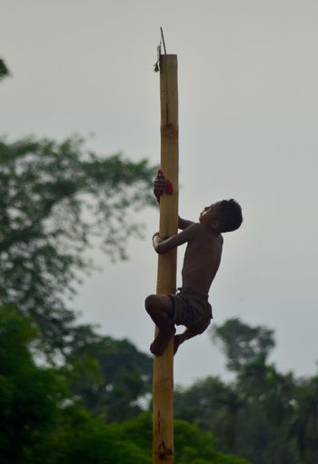 Boko: Participants took part in traditional Greased Bamboo Pole Climbing game during the Suwori festival as part of the Rongali Bihu celebrations at Boko in Kamrup district of Assam, India on Tuesday, April 19, 2016. Photo: Kulendu Kalita. Assam, India Bamboo Pole Bamboo Pole Climbing Game Rongali Bihu Celebrations The Suwori Festival Tourism Traditional Games Traditional Greased Bamboo