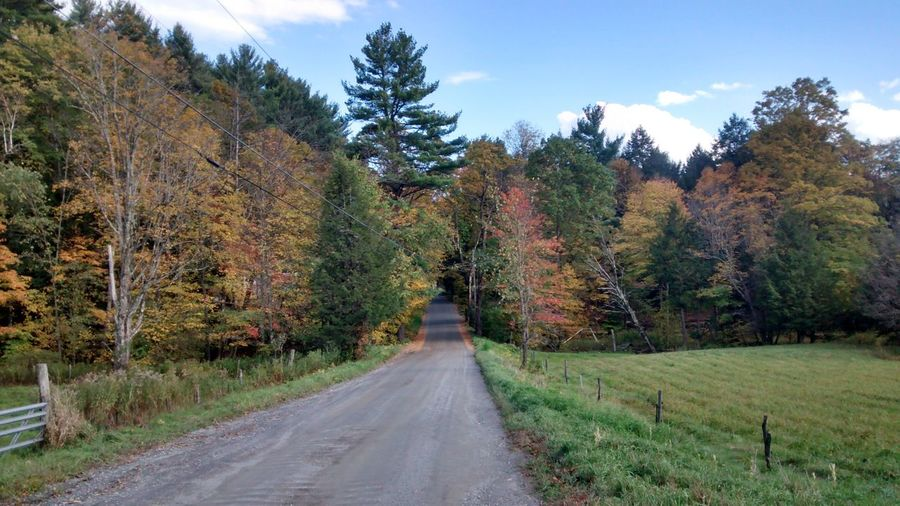 Melancholic Landscapes Fall Colors Back Road Beauty