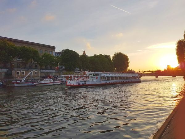 Nautical Vessel Water Reflection Tree No People Sunset Moored Sky Outdoors Architecture Day Nature Paris Sheep Croisiere Seine Sunset
