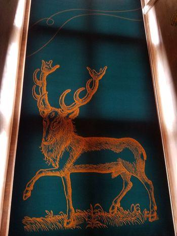 EyeEm Selects Animal Close-up Scotland No People Representing