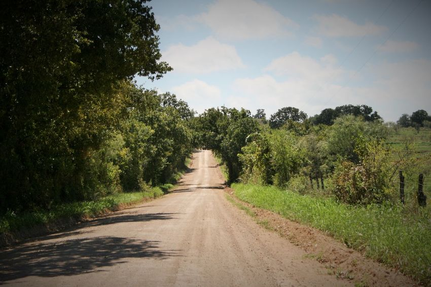 Hanging Out Taking Photos Check This Out Landscape_photography Back Road  Texas Trees Dirt Road