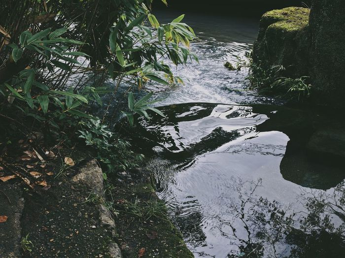 River amidst rocks
