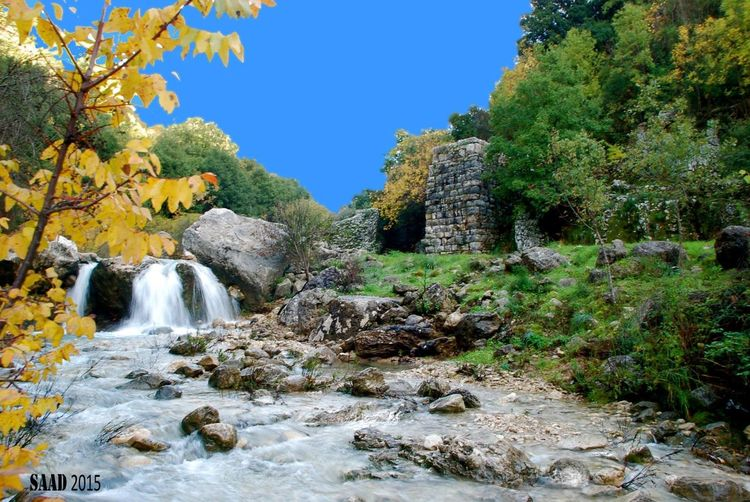 The Mill on the Floss by Bob Saad rather than Charles Dickens الطاحونة تحت القلعة. غلبون Courtesy Of Bob Saad