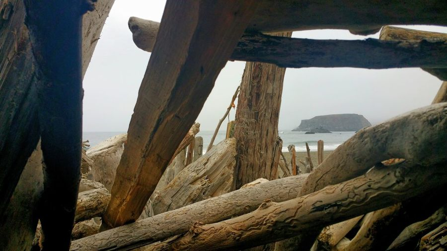 Driftwood hut. Ocean view from interior. Driftwood Hut Logs Background Zen Copy Space Building Foreground Focus Weathered Wood Braced Sand Waves Living Interior View Countryside Building Timeless Inside Foggy Misty Sea Water Beach Sky Landscape Shore Sandy Beach