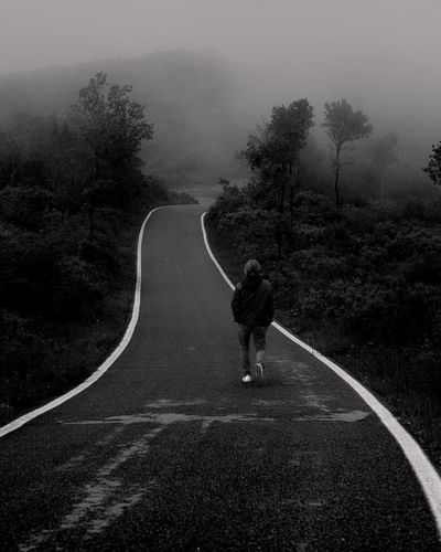 Rear View Of Man Walking On Road Amidst Tees During Foggy Weather