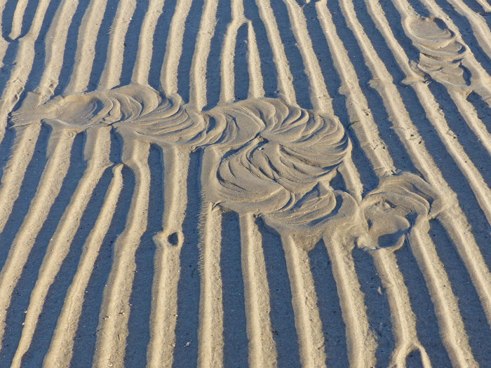 Ecosse Beach Beauty In Nature Natural Pattern Nature Nature_perfection Sand