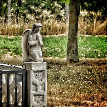 The felt pain teaches us the value of things. Eyeem Hungary Pain Hurt Love Depressed Sadness Alone Tears Hurts Feelings