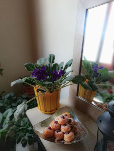 High angle view of potted plant on table at home