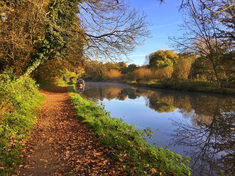 Autumn by the canal Misty Morning Blue Sky Grand Union Canal Canal Life EyeEmNewHere Canal Walks Canals And Waterways Tree Water Nature Beauty In Nature Tranquil Scene