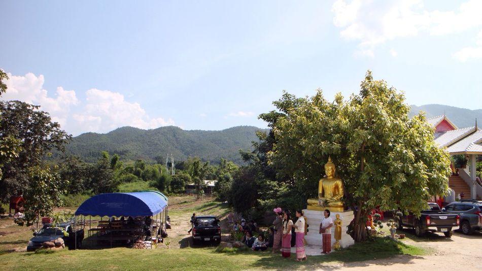 Lord Buddha Enlightenment Bodhi Tree Thailand Buddhism