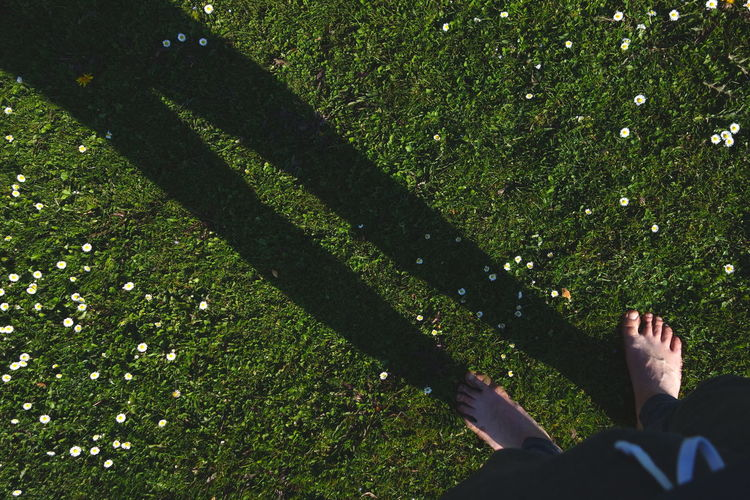 Low section of man shadow on grass