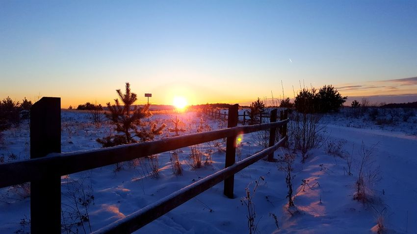 Beauty In Nature Cold Temperature Sunset Snow Nature Landscape Evening Colors Of Nature Color Of Life Evening Color