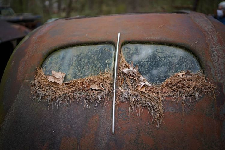 Close-up of old rusty car