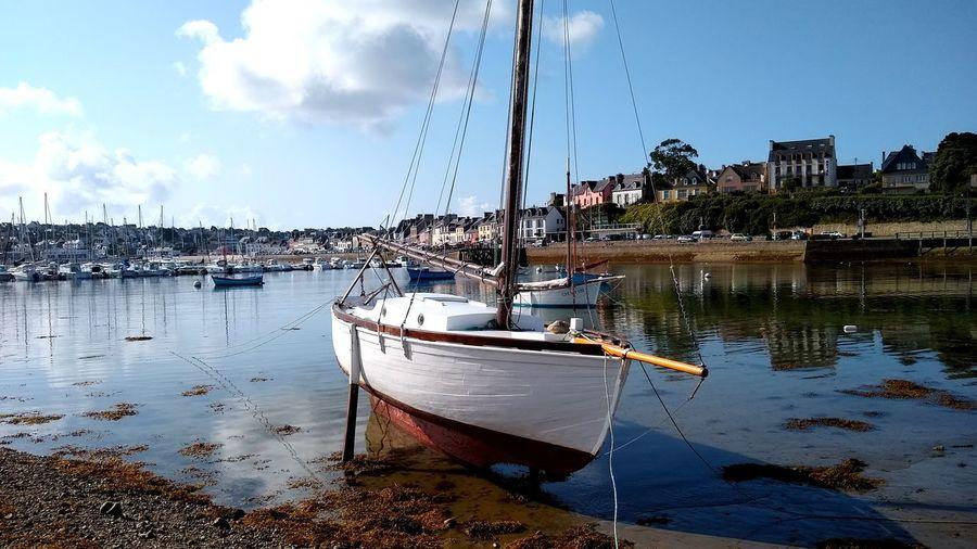Sailboats moored at marina