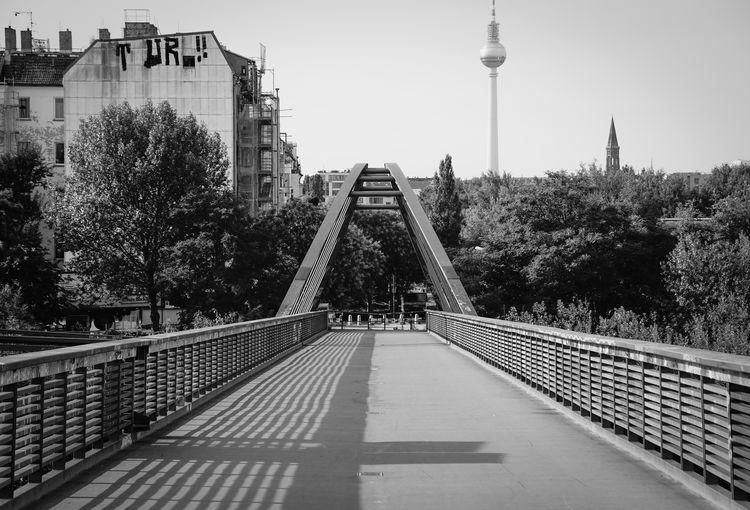Bridge And Trees In City