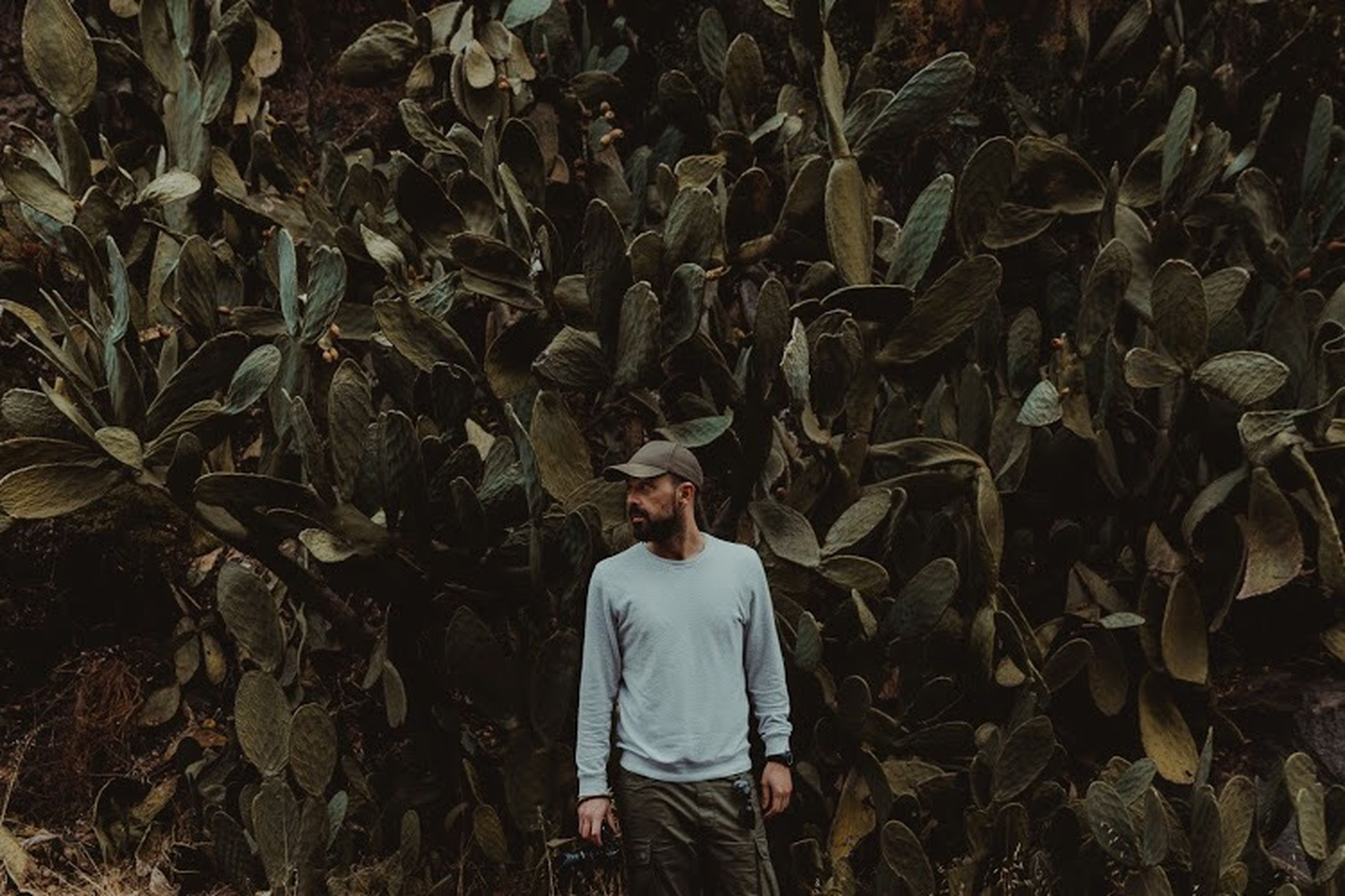 standing, one person, real people, growth, land, plant, lifestyles, men, casual clothing, rear view, leaf, leisure activity, plant part, field, day, three quarter length, nature, agriculture, leaves