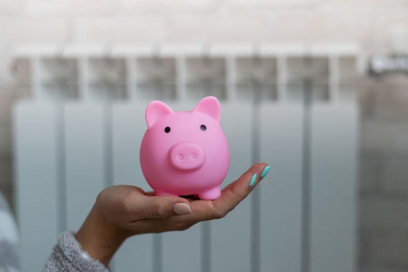Close up of hand holding piggybank