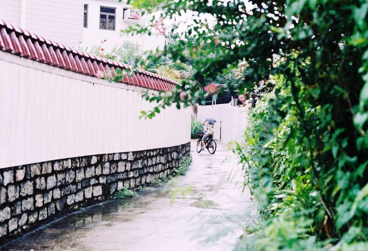 南丫岛 下雨天和骑自行车的少年🌂 First Eyeem Photo
