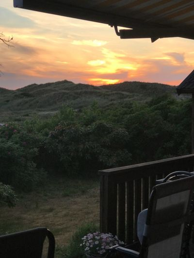 Evening, sunset view from the garden Sweden Frösakull Frösakull Sand Dunes The Week on EyeEm Sky Sunset Plant Beauty In Nature Scenics - Nature Nature Cloud - Sky Tranquil Scene Tranquility No People Idyllic Orange Color Landscape Growth Environment Tree