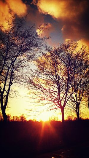 Januar und so ein schönes Wetter Walking Around Relaxing