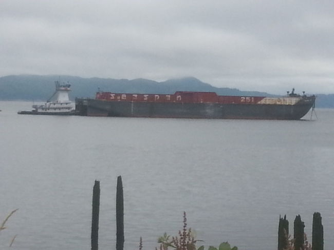 Outdoors Nautical Vessel Nature Horizon Over Water Sea Sky Water Container Ship Water's Edge Northcoastrecovery Columbia River Astoria, Oregon Astoria, OR Tranquil Scene Tranquility Freight Transportation Industry Shipping  Environment