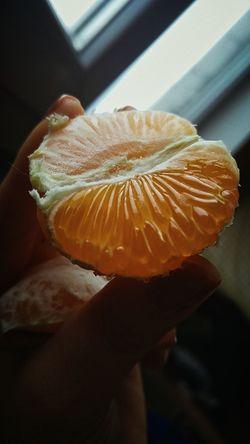 Freshness Close-up Mandarin Mandarin Orange 🍊🍏fruits🍏🍊 Fruit Fruits ♡ Fruit Photography Mandarins Micro Microscopic View Part Of Part Window View