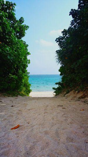 Traveling Holiday Okinawa Ishigaki Island Life Is A Beach