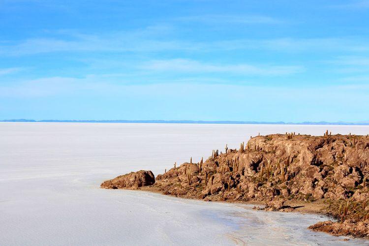 Cactus island, Salar De Uyuni - Bolivia Bolivia Salar De Uyuni Sky No People Outdoors Landscape Blue Nature Tranquil Scene Cloud - Sky Beauty In Nature Dramatic Sky Scenics Tranquility Majestic EyeEmNewHere EyeEm Selects Lost In The Landscape