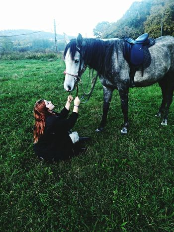 I love her so much💜.. Domestic Animals One Animal Day Sky Grass Pets Green Color SUMMEER Horse Photography  Horse Riding Horse <3 Horselove Horse Life Horse Power Horselovers Domestic Animals Animal Themes Mammal Grass Pets Green Color One Animal No People Outdoors Day