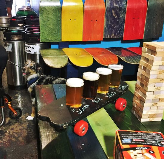 🎨 Jinga Skateboard Australianshepherd Dog Beergarden  Beer Multi Colored No People Variation Choice Table High Angle View Large Group Of Objects Indoors